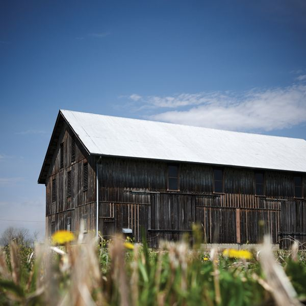 This 1880's-era drying barn is thought to have once provided hop drying and storage for beer baron Christian Moerlein. It still performs its original function as a drying barn, only now it houses millions of prairie and wetland seeds.