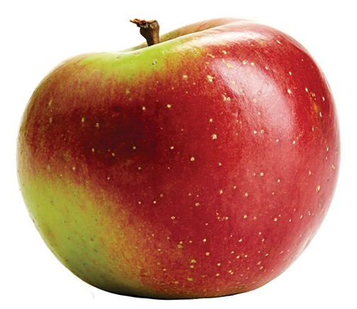 CM_OCT15_DINE_Apple_Melrose