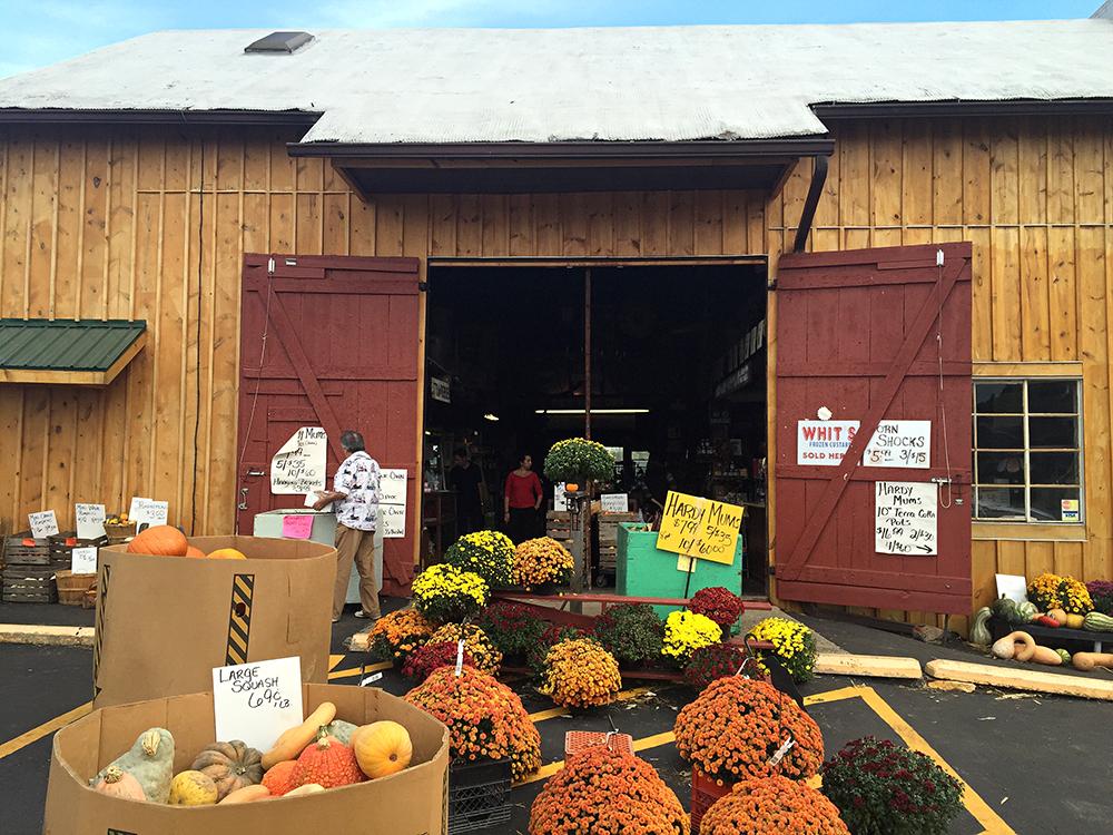Ohio Cider Fest, Hidden Valley Fruit Farm
