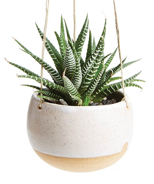 Liven up a drab cubicle with Christie Goodfellow's earthy terra-cotta hanging planter. With plant, $38, cgceramics.net