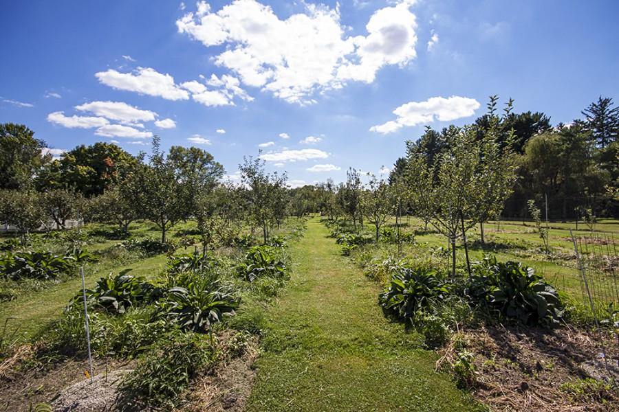 Lindner's farm