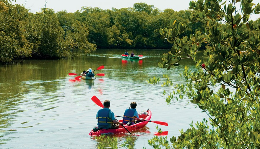 Kayaking the mangrove estuary in Lovers Key State Park