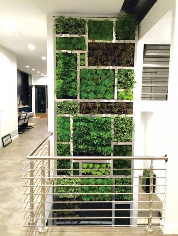 Urban Blooms Private Residence Installation