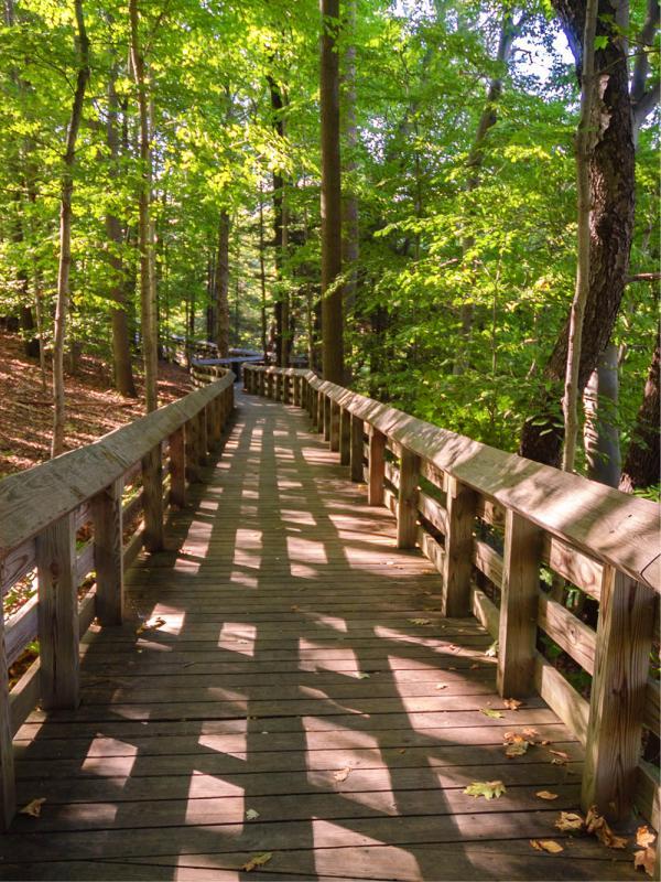 A walking path through Cuyahoga Valley
