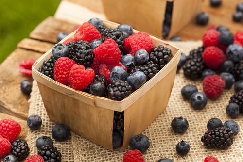 Top 5 Places to Pick Berries