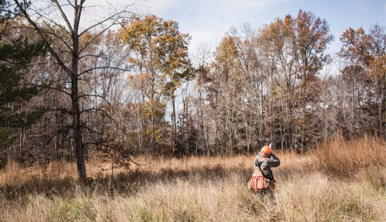 The Ruffed Grouse Society Is the Future of Conservation