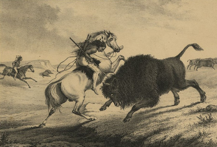 Old Lithograph of Native American spearing bison. This is how promoters promised the Great Buffalo Hunt would look in 1851.