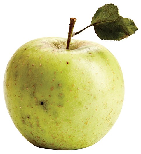 CM_OCT15_DINE_Apple_Golden