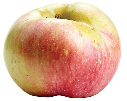 CM_OCT15_DINE_Apple_Northern