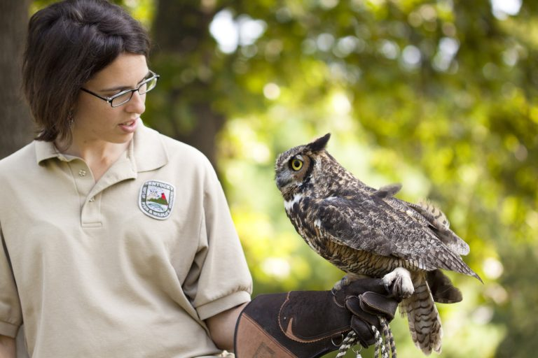 Explore Kentucky's Natural Wonders at Salato Wildlife Education Center