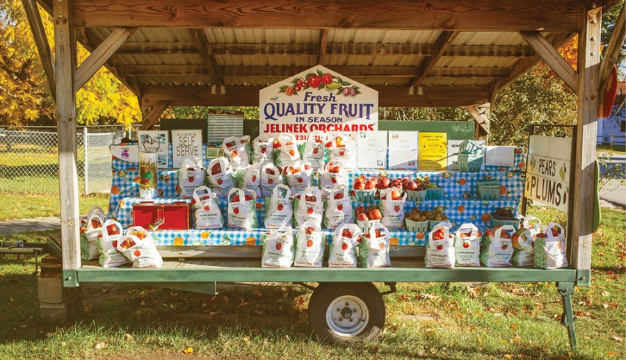 """An unattended """"honor stand"""" selling fruit in Suttons Bay"""