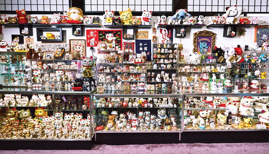 The Lucky Cat Museum