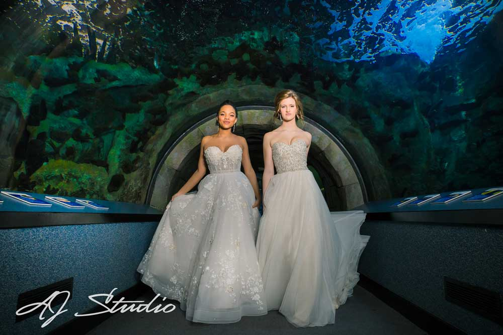Bridal Pampering Party At Newport Aquarium Cincinnati Magazine