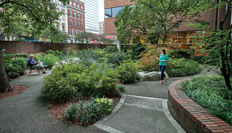 The Downtown Library Has a Secret Garden