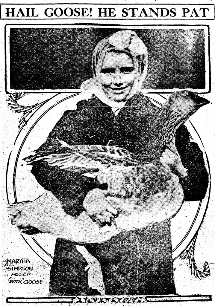With turkeys predicted to cost 40 cents per pound around Thanksgiving in 1916, many Cincinnati housewives opted for the economical goose at less than 18 cents a pound.