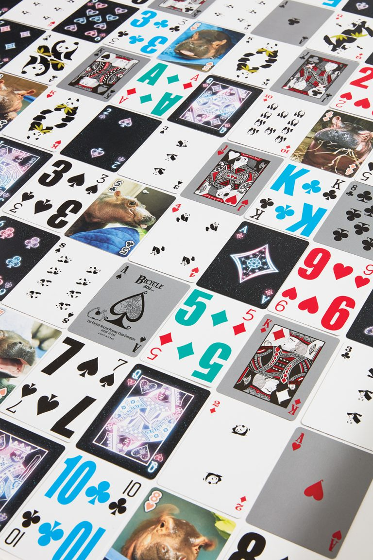 Bicycle Card Decks Have Something for Everyone