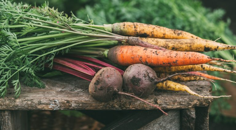 Five Fall Veggies You Can Grow at Home