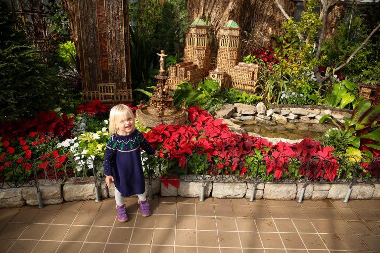 Peek Inside Krohn Conservatory's A Very Merry Garden Holiday