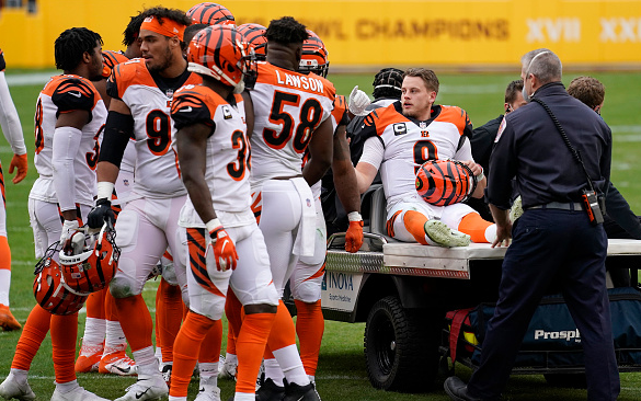 What Did Bengals Fans Do to Deserve This Torture?