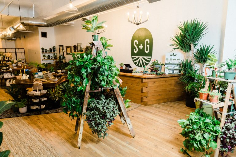 At Covington's New Sage + Garden, Urban Sustainably Starts with a Houseplant